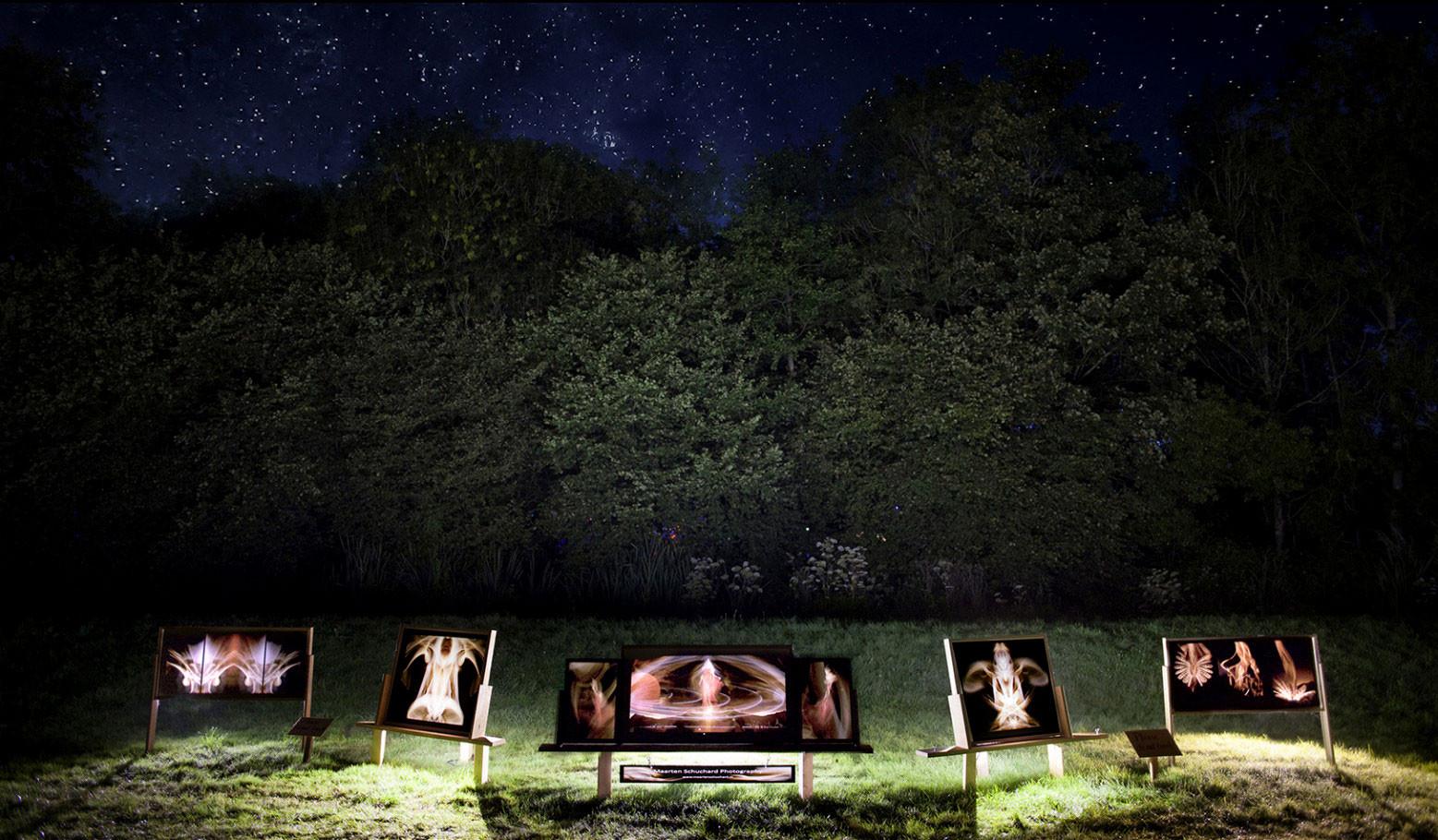 Psy-Fi festival 2015 - Art installation - www.psy-fi.nl
