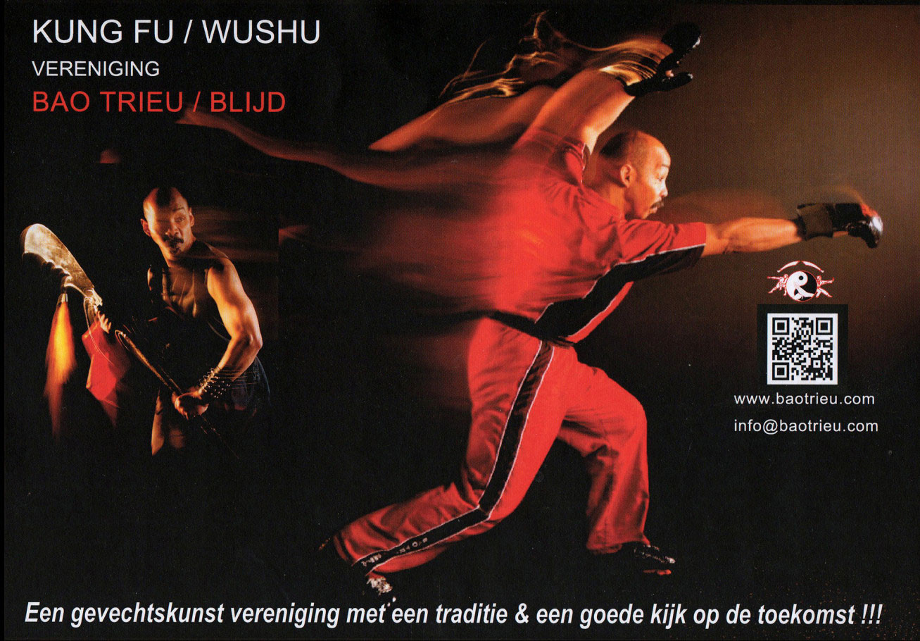 Bao Trieu Kung Fu - promotion materials - 2010